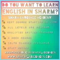 English Language Courses starting June 2015 at Sharm Language Academy