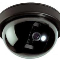 New Fake Security Camera