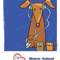Sharm Animal Clinic