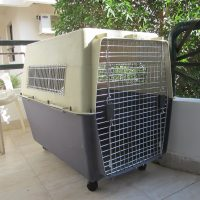 Dog's Transportation Cage FOR RENT