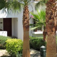 Delta Sharm, one bedroom apartment for sale