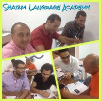 Sharm Language Academy - Language Courses