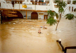 diversint_flood96_3