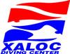 logo-Xaloc