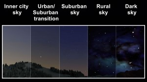 Seeing the Perseid meteor shower