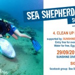 Sunshine Divers Clean Up
