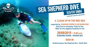 Sea Shepherd Clean-Up at Sunshine Divers Sharks Bay with free breakfast